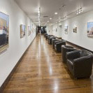 Curated Art Gallery at St. Supery