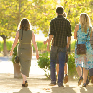 Five young people walking down the entrance path to St. Supéry Winery