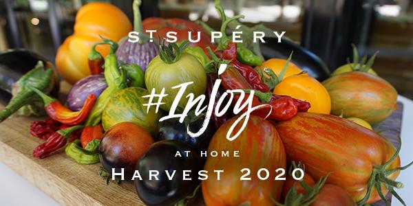 Harvest 2020 Banner