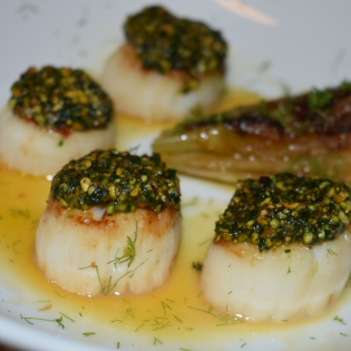 Pistachio Crusted Scallops with a Grapefruit and Saffron Gastrique and Braised Fennel