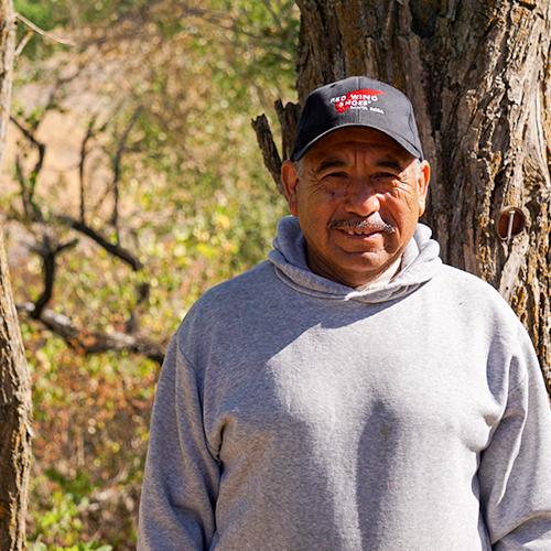 Juan Vega Castro - Vineyards