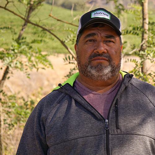 Luis Fernandez - Vineyards