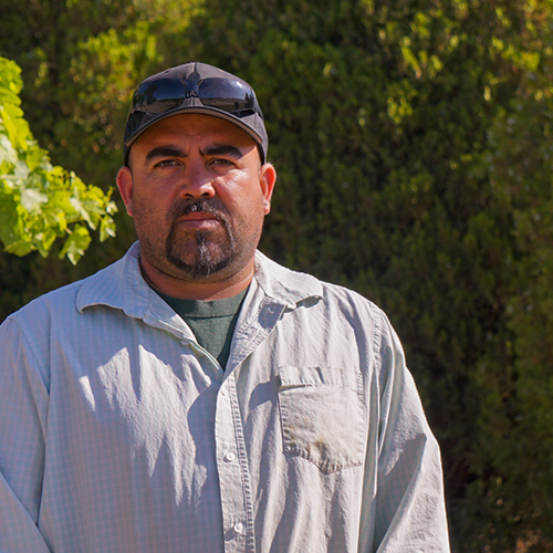 Hector Rodriguez Hurtado | Vineyards