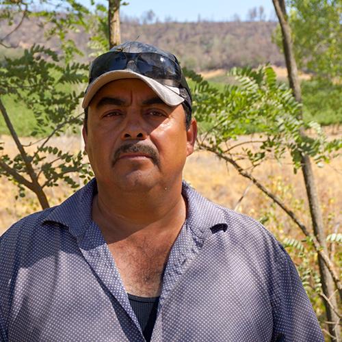 Ruben Orozco Medina | Vineyards